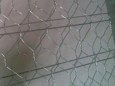 加筋石笼网3