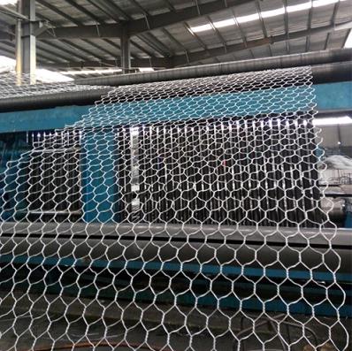 heavy zinc2